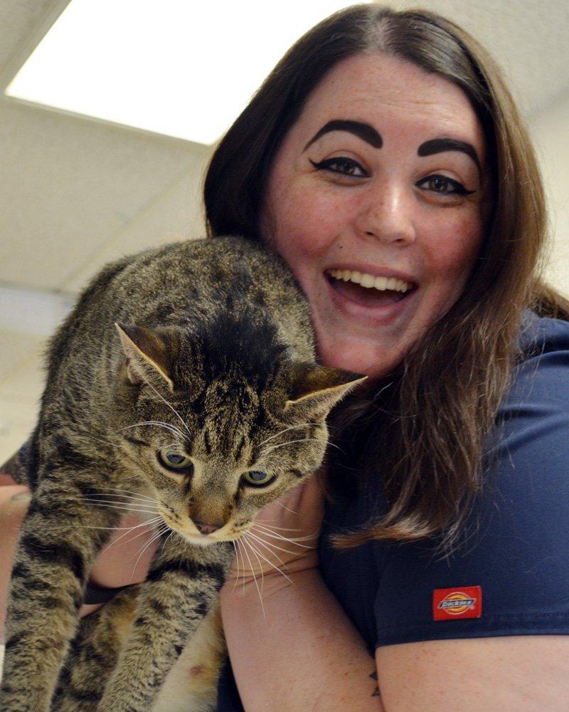 Beltsville team with cat
